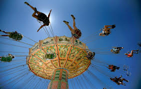 top 20 things to do at the sonoma county fair
