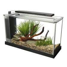 Fish Tank Desk by Fish Bowls Desktop Aquariums U0026 Fish Tanks Petco