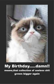Fat Cat Meme - happy birthday fat cat meme 4birthday info