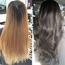 25 trending ash grey hair ideas on pinterest grey brown hair