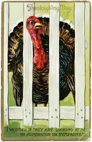 free thanksgiving turkey 590 best vintage turkey images on pinterest vintage thanksgiving