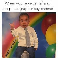 Vegan Meme - 17 of the best vegan memes from 2017