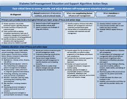 diabetes self management education and support in type 2 diabetes
