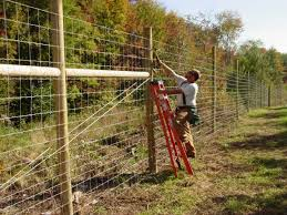 18 best deer fences images on pinterest deer fence garden