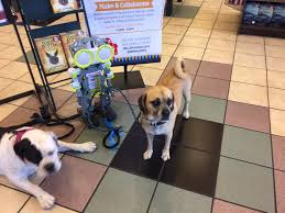 Barnes Noble Mission Valley Barnes And Noble Mission Valley Facebook