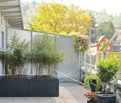 Wohnzimmer Deko Bambus Bambus Als Sichtschutz Fesselnde Auf Moderne Deko Ideen Plus Als