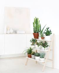 Wall Planters Indoor Ikea Decorating With Indoor Plants Plants Carnival And Shelves