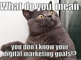 Funny Marketing Memes - 11 best digital marketing memes images on pinterest digital