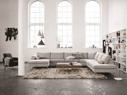 2 Sofas In Living Room by Boconcept Indivi 2 Sofa
