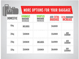united airlines baggage fees domestic free checked baggage united airlines best it just jumps to for