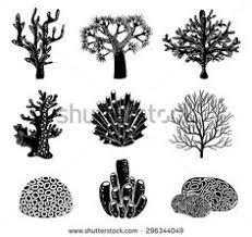 drawing a house 1 clipart etc how to draw a coral reef madrepore coral clipart etc crafts