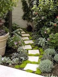 small front garden ideas google search ideas for the gardens