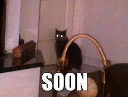 Angry Cat Meme Generator - creepy cat weknowmemes generator