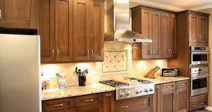 Dynasty Kitchen Cabinets by Frameless Kitchen Cabinets Or Framed Kitchen Cabinets