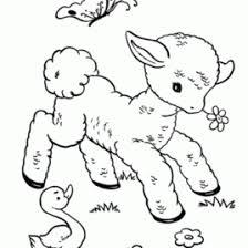 cute sheep coloring kids drawing coloring pages marisa