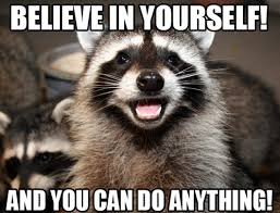 Racoon Meme - my wife and i just invented the positive raccoon meme he s positive