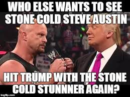 Stone Cold Meme - stone cold stunner imgflip