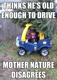 Car Wreck Meme - thinks he s old enough to drive mother nature disagrees car