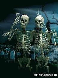 skeleton selfies pictures photos and images for
