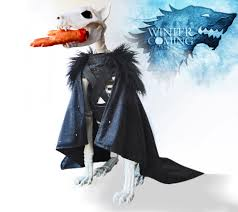 boutique halloween costumes hounds of hell boutique u2013 luxury dog costumes