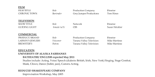 resume professional resume outline horrible professional resume