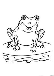 frog big eyes coloring pages frog coloring sheets