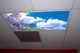 Fluorescent Light Covers Fabric Jacaranda Tree Skypanels Replacement Fluorescent Light Diffuser