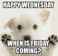 Wednesday Meme - wednesday meme