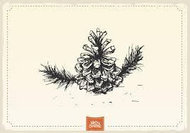 pinecone free vector art 1869 free downloads