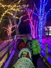 zoo lights at hogle zoo this and that week 71 two peas their pod