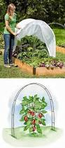 Types Of Gardening Tools - use hoops to support garden row covers protecting plants from