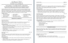Resume Sample Customer Service by Customer Resume Samples For Customer Service