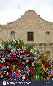 flowers san antonio alamo tx flowers verticle during celebration san antonio