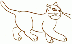 exam guide online how to draw a walking cat