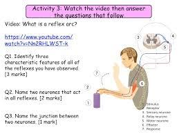 Describe A Reflex Action M Est U0027s Shop Teaching Resources Tes