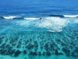 blue bubble waves wallpapers the rock images qygjxz