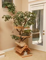 accessories cat tree houses design inspiration design for cat