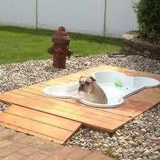 dog friendly backyard no grass landscaping gardening ideas