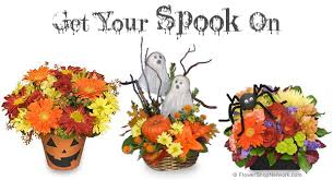 get your spook on with halloween flowers