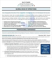 sample resume format for experienced person free executive resume