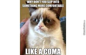 Grumpy Cat Coma Meme - grumpy cat wishes a coma for you by braianz meme center