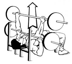 Correct Technique For Bench Press Barbell Bench Press Exercise For Chest Muscles Gofitandhealthy