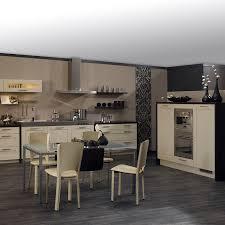 cuisine lorient cuisine plus des nouveautés 2011 pratiques et tendances cuisine