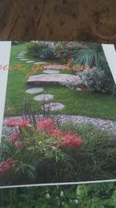 bamboo land nursery and parklands 1476 best inspirational gardens u0026 plants images on pinterest