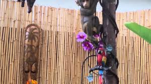 our tiki themed backyard in little suburbia youtube