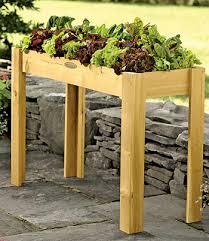 Urban Herb Garden Ideas - herb garden urban garden growing herbs gardening garden and