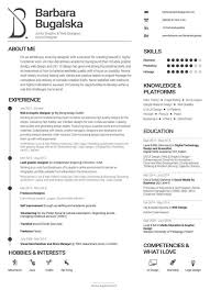 Sample Resume Entry Level by Resume Examples Of Cv Format Technical Resume Objective Examples