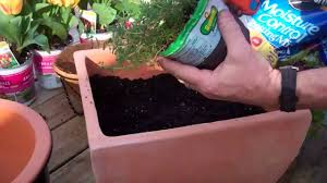 how to plant an herb container garden the home depot youtube
