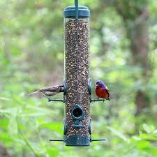 amazon com garden song 480 classic bird feeder wild bird