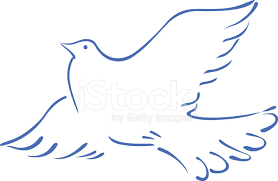 sketch of a flying dove stock photos freeimages com